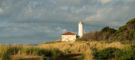 Special encounters at the lighthouse at sunrise
