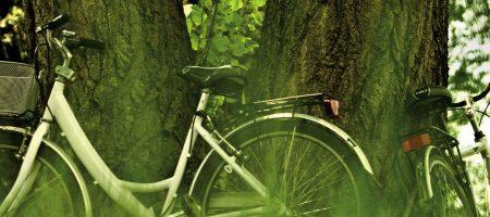 By bike for the Gira Lemene