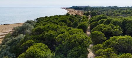 Bibione's cycling routes are certified for Google Maps